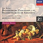 English Chamber Orchestra Bach, J.S.: Brandenburg Concertos Etc. (2 Cds)