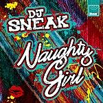 DJ Sneak Naughty Girl