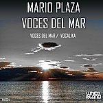 Mario Plaza Voces Del Mar