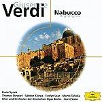 Evelyn Lear Verdi: Nabucco (Highlights) (Eloquence)