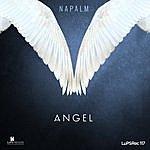 Napalm Angel