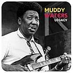 Muddy Waters Legacy