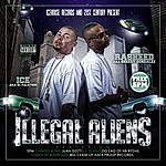 Ice Illegal Aliens