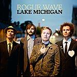 Rogue Wave Lake Michigan