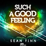 Sean Finn Such A Good Feeling
