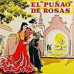 Ataulfo Argenta El Punao De Rosas