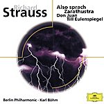 Michel Schwalbé R. Strauss: Also Sprach Zarathustra; Don Juan; Till Eulenspiegel