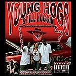 Young Hogs Still Hoggin