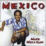 Mark Mulligan Mexico