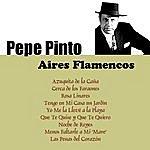 Pepe Pinto Aires Flamencos