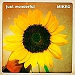 Mikro Just Wonderful