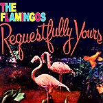 The Flamingos Requestfully Yours