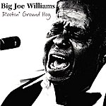 Big Joe Williams Rootin' Ground Hog