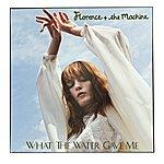 Florence What The Water Gave Me (Jamie Jones Edit)