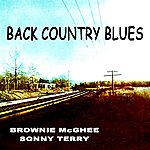 Brownie McGhee Back Country Blues