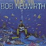 Bob Neuwirth Look Up