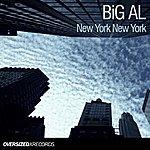 Bigal New York New York
