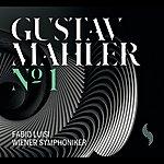 Fabio Luisi Mahler: Symphony No. 1