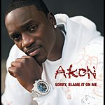 Akon Sorry, Blame It On Me (Int'l 2trk)
