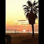 Biff Scarborough Santa Monica Bay
