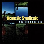 Acoustic Syndicate Tributaries