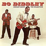 Bo Diddley Diddley Daddy - The Collection