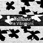 The Vibrations Wallflower