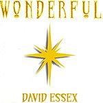 David Essex Wonderful