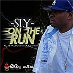 Sly On The Run - Single