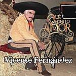 Vicente Fernández Que Bonito Amor