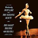 Joseph Levine Swan Lake/The Sleeping Beauty