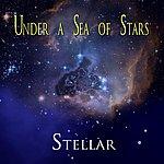 Stellar Under A Sea Of Stars