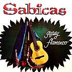 Sabicas Gypsy Flamenco