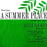 Billy Vaughn Theme From A Summer Place And Other Great Themes