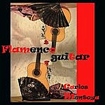 Carlos Montoya Flamenco Guitar