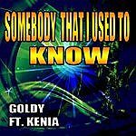 Goldy Somebody That I Used To Know