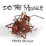 Franz Nicolay Do The Struggle