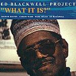 Ed Blackwell Blackwell, Ed: Ed Blackwell Project, Vol. 1