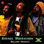 Israel Vibration Falling Angels