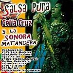 Celia Cruz Salsa Pura