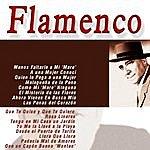 Pepe Pinto Flamenco