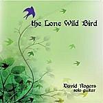 David Rogers The Lone Wild Bird