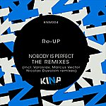 Re-up Nobody Is Perfect, The Remixes - Single