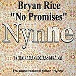Bryan Rice No Promises
