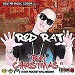 Red Rat Bun Christmas