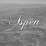 Aspen Songs On Tape