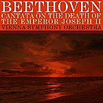 Vienna Symphony Orchestra Cantata On The Death Of The Emperor Joseph II