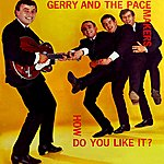 Gerry & The Pacemakers How Do You Like It?