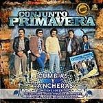 Conjunto Primavera Cumbias Y Rancheras