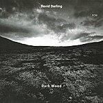 David Darling Dark Wood